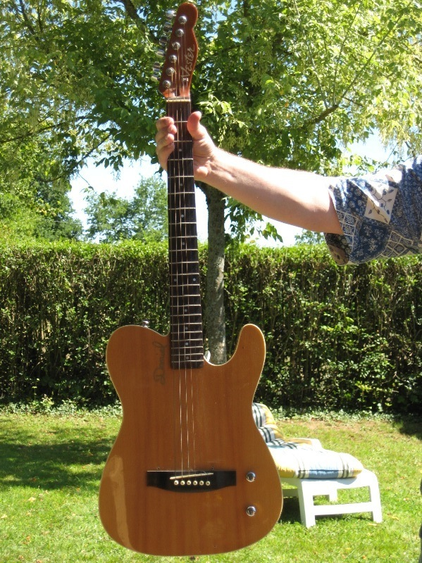 Fender Telecaster Addicts - Page 4 TeleVester-Leinad1-800
